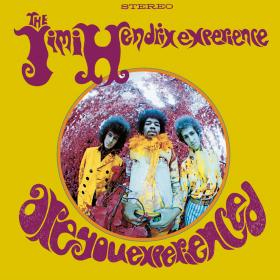 Jimi Hendrix - ARE YOU EXPERIENCED - cover